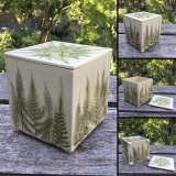 Square Lidded Fern Container